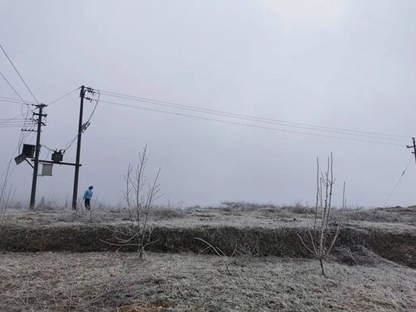 遵义绥阳供电局蒲场所多举措应对凝冻天气